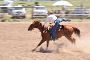 Paul Grice, SGHA, youth rodeo, Western Horseman