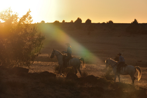 Shaft - horseback riders in silhouette