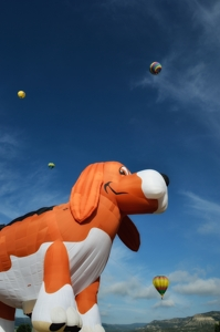 Beagle Maximus at International Santa Fe Trail Balloon Rally