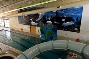 Raton Regional Aquatic Center's new mural by Melina Marlow