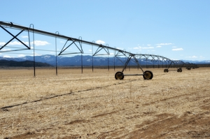 Center-pivot irrigation, Fort Garland, Colorado, San Luis Valley