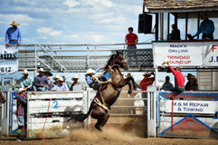 Shade Etbauer, saddle bronc event, Trinidad Round-up Rodeo 2015, by Tim Keller