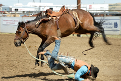 Taylor Tupper bites the dust at Trinidad Round-up Rodeo 2016