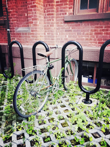 Bicycle on a rack in Brooklyn