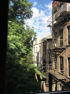 Brooklyn window view