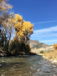 Cimarron River, Colorado, autumn
