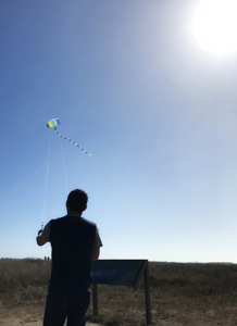 Kite flying at California coast's Fort Bragg, Glass Beach