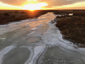 Frozen Arkansas River at Holcomb, Kansas, January 2018, by Tim Keller