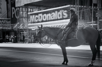 Times Square - NYPD horse, McDonald's