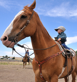 Bronc Embry, little boy on big horse at rodeo